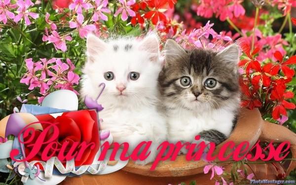 Pour Ma Princesse Centerblog
